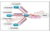 Introduction to Networks Version 6 – ITN Chapter 5 Exam
